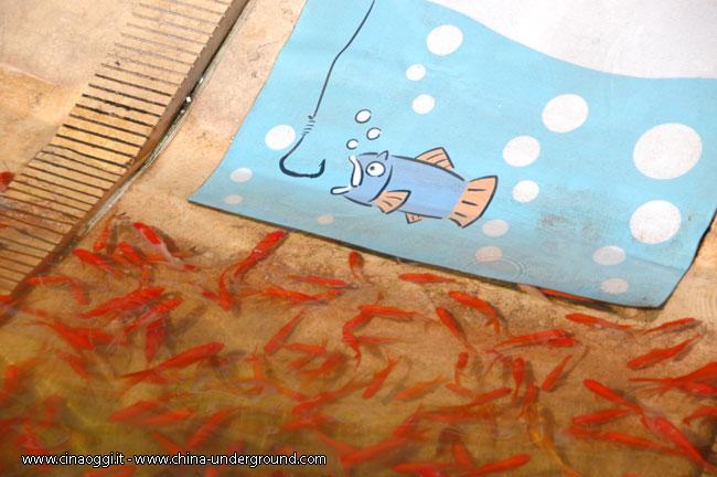 pesca-pesci-rossi-cina-2
